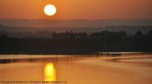 La Laguna de Sariñena. POST - 4 -17 DE MARZO